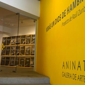 SANTIAGO DE CHILE - ANINAT GALLERY AND THE HYPE OF CHALLENGE