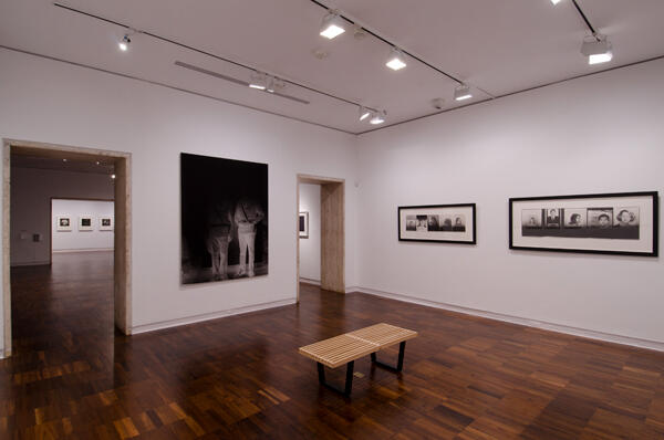 Installation view of Observed:
