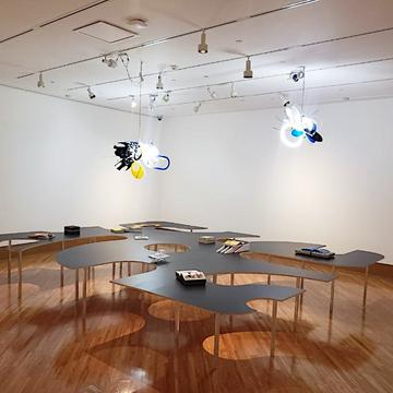 Installation view of Rafael Domenech.