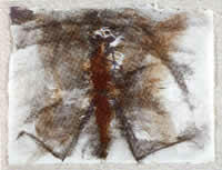 """Insectario H"", acuarela s/papel, 23.5 x 30.5 cm, 1997"